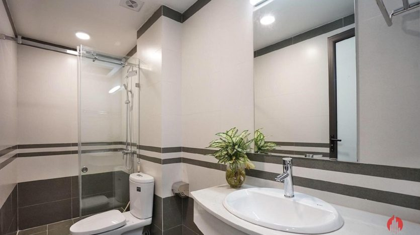 serviced apartment on nhat chieu 11