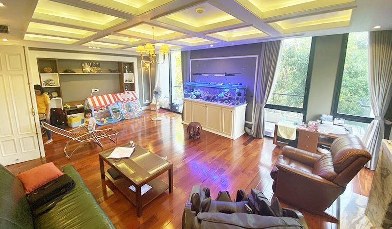 Huge contemporary villa for rent on Au Co street Tay Ho district 3