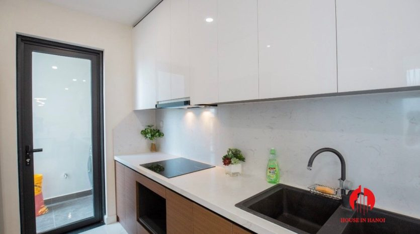 modish apartment for rent in Sunshine City 23
