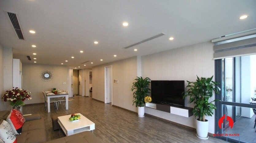 apartment for rent on nguyen dinh thi 3