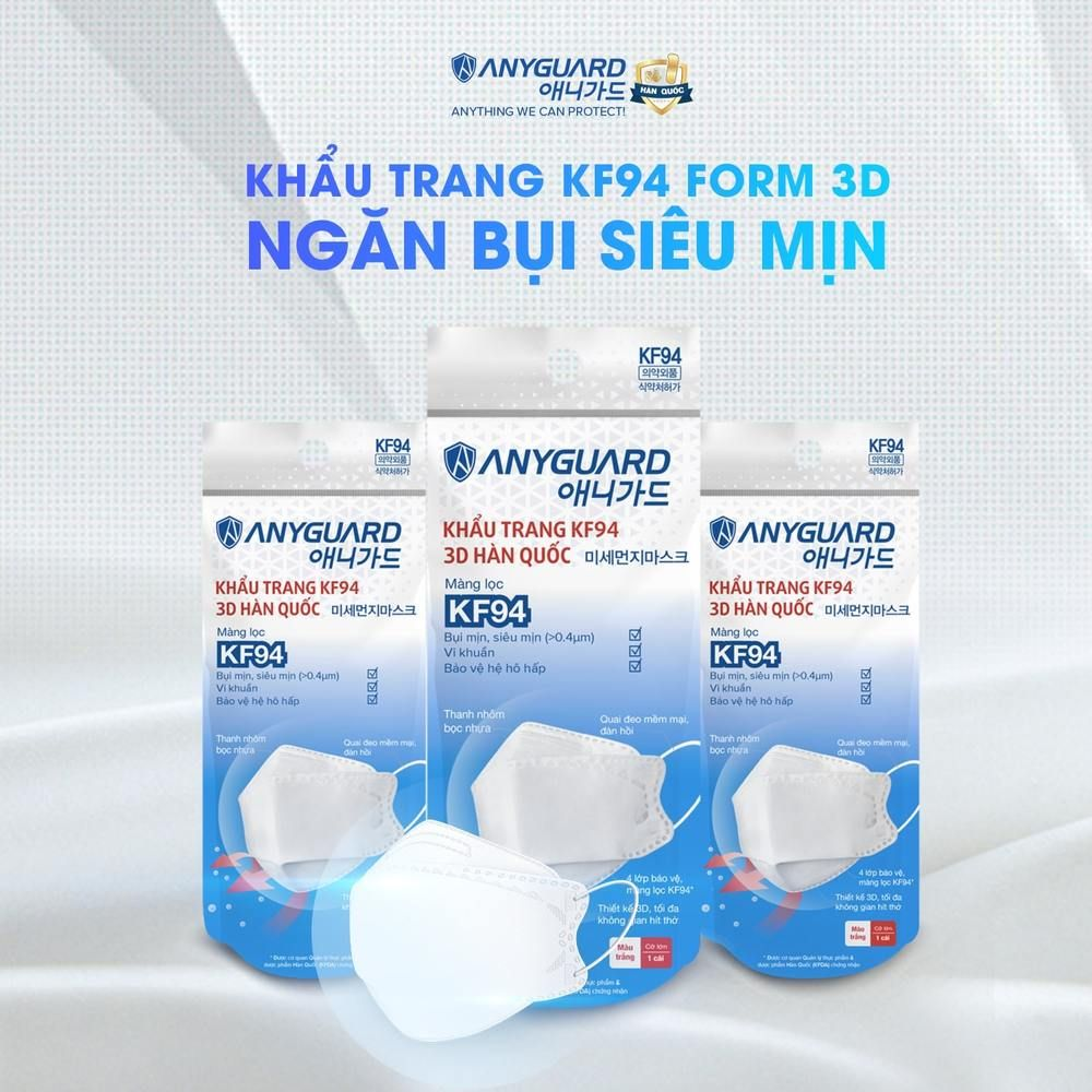 anyguard pm 2.5 mask for sale in hanoi vietnam 2